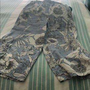 Zara cropped pant